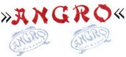angro_logo